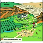 Medieval Farming and the 3 field system